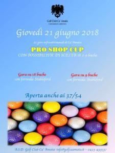 PRO SHOP CUP summer